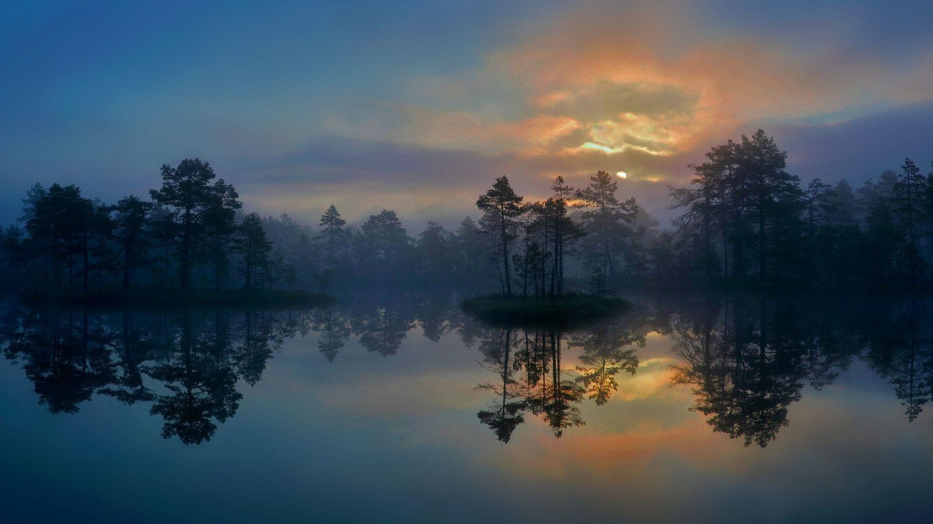 A wetland in Västmanland, Sweden (© Hans Strand/Getty