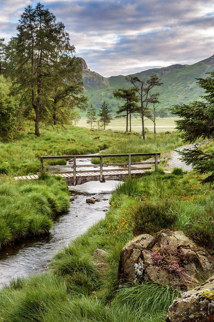 Blea Tarn, Lake District, England #scenery
