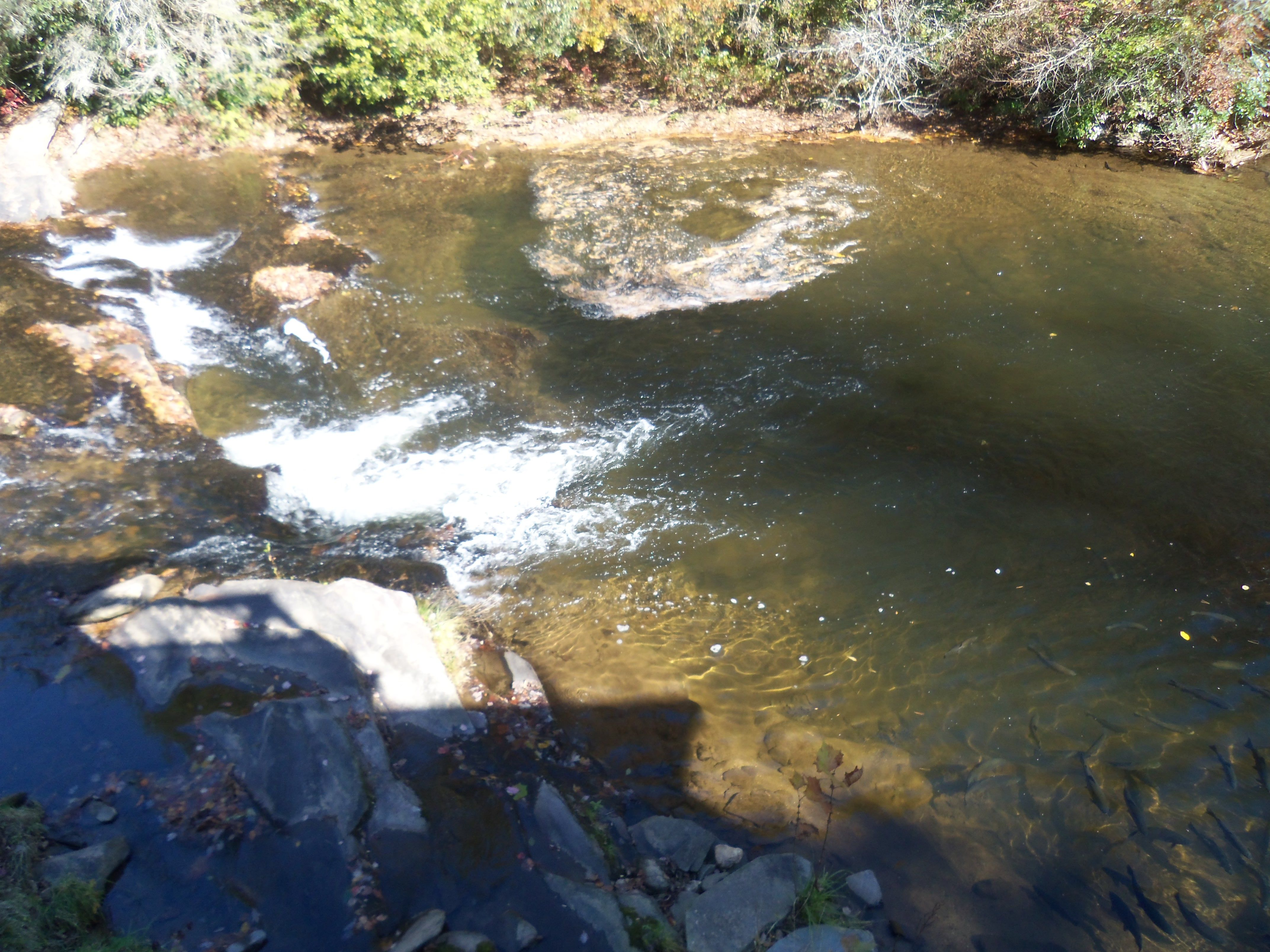 Soque river in north river water my travel