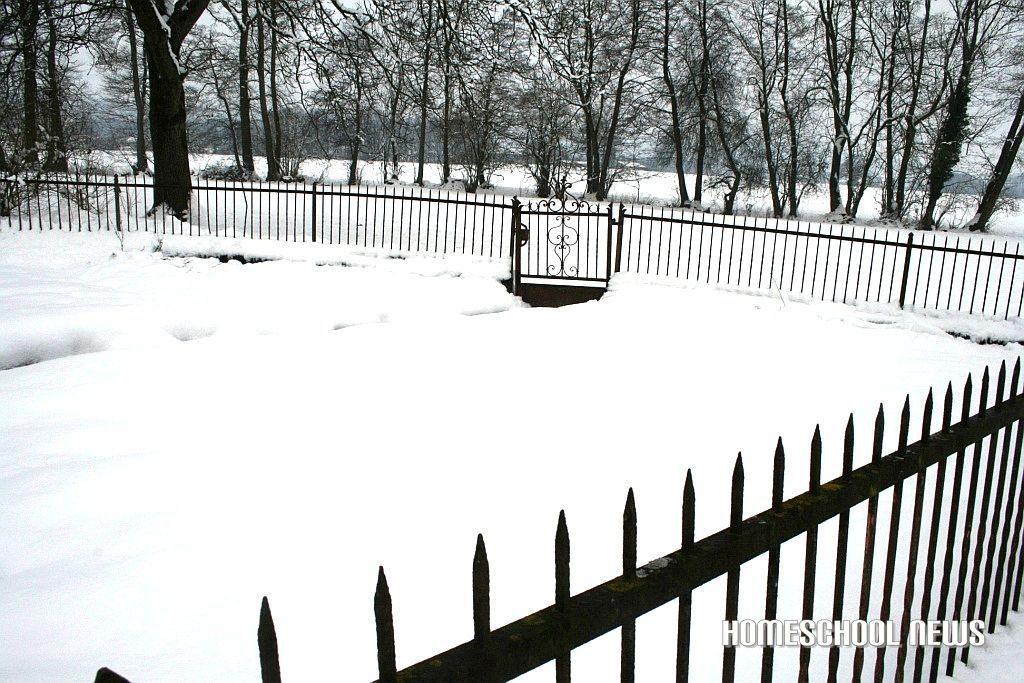 Schnee- und Frost-Impressionen, Snow and Frost Impressions, Garten mit Schnee verdeckt, Garden covered in snow