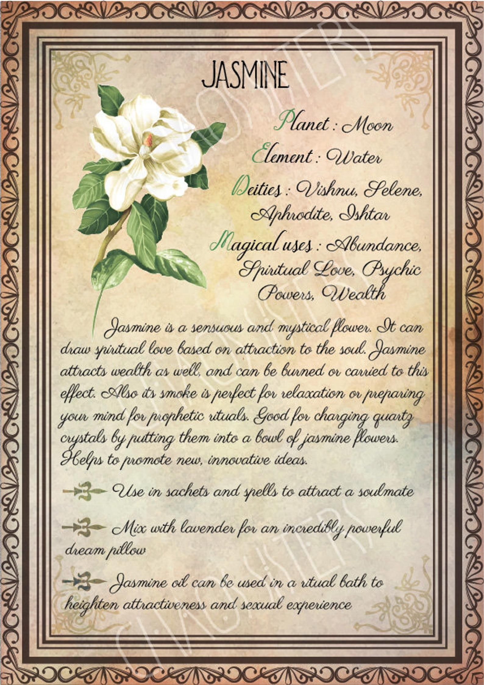 Printable Herbs Book of Shadows Pages Set 4, Herbs & Plants Correspondence, Grimoire Pages, Witchcraft, Wicca, Printable BOS
