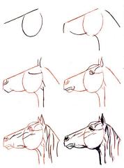 dessiner un cheval comment faire dessiner pinterest