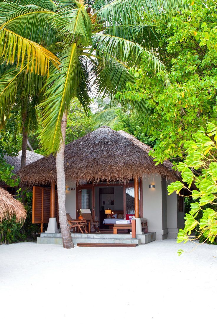 Private Island Idyll With Overwater Villas A House Reef And Three Top Notch Restaurants Tropical Beach Houses Beach House Design Beach Cottages