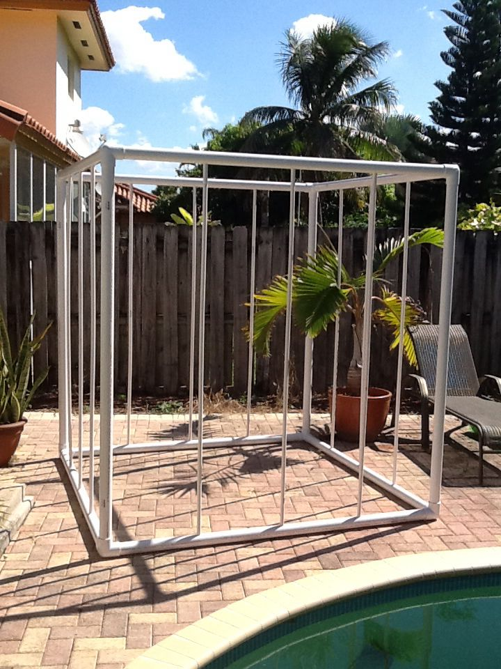Unfinished PVC Cage. Next step, spray paint. Will it keep CarnEvil from escaping on All Hallows' Eve? We shall see.... #halloweenprop