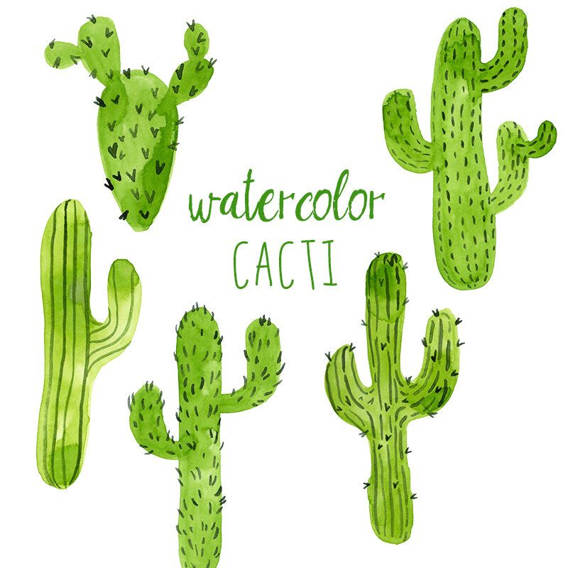 Watercolor Cacti Digital Cactus Clip Art Western Clipart Trend
