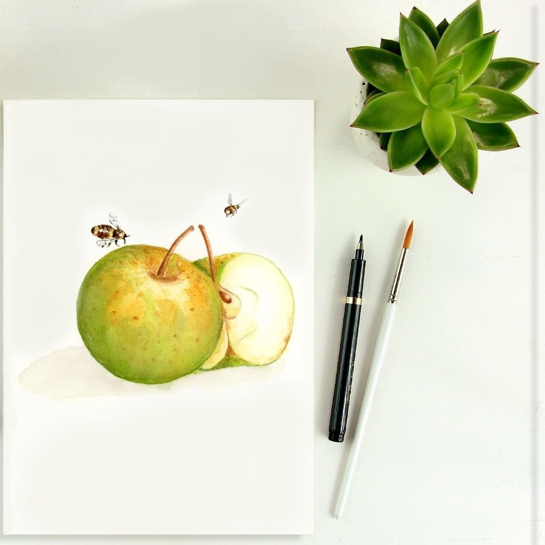 Pin By Fiolecik Ania On Akwarele Watercolour Fruit Pear Apple