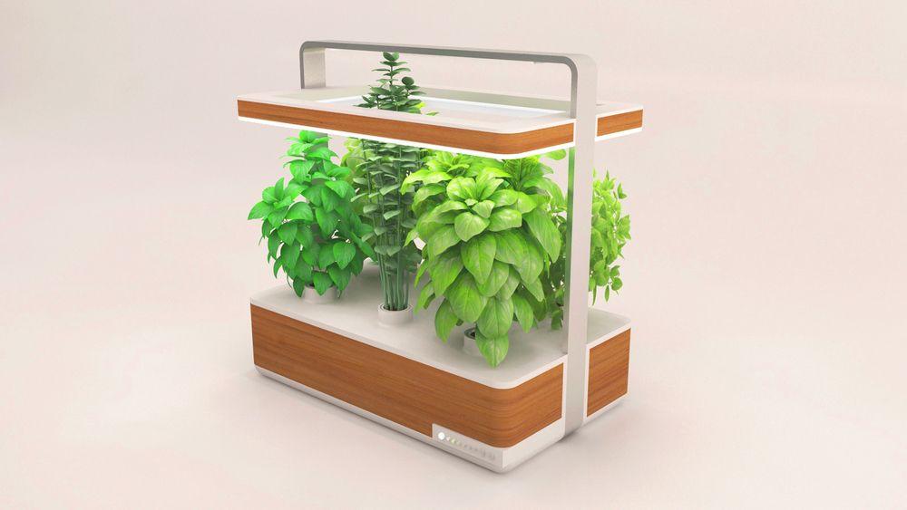 pour avoir des herbes aromatiques fraiches toute l ann e. Black Bedroom Furniture Sets. Home Design Ideas