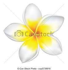 Fleur De Tiaré Dessin Recherche Google Dessin Fleur