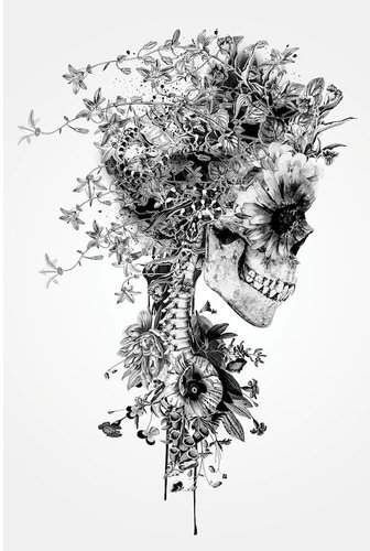 'Floral Skull Series: Skull B&W' Graphic Art Print on Canvas