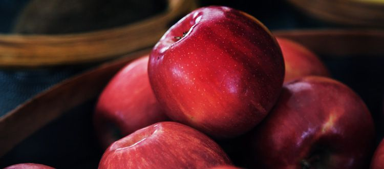 Strawberry, Cranberry, Apple Turkey Wrap Apple pie bread