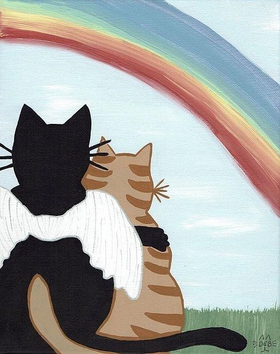 rainbows a cat artphone