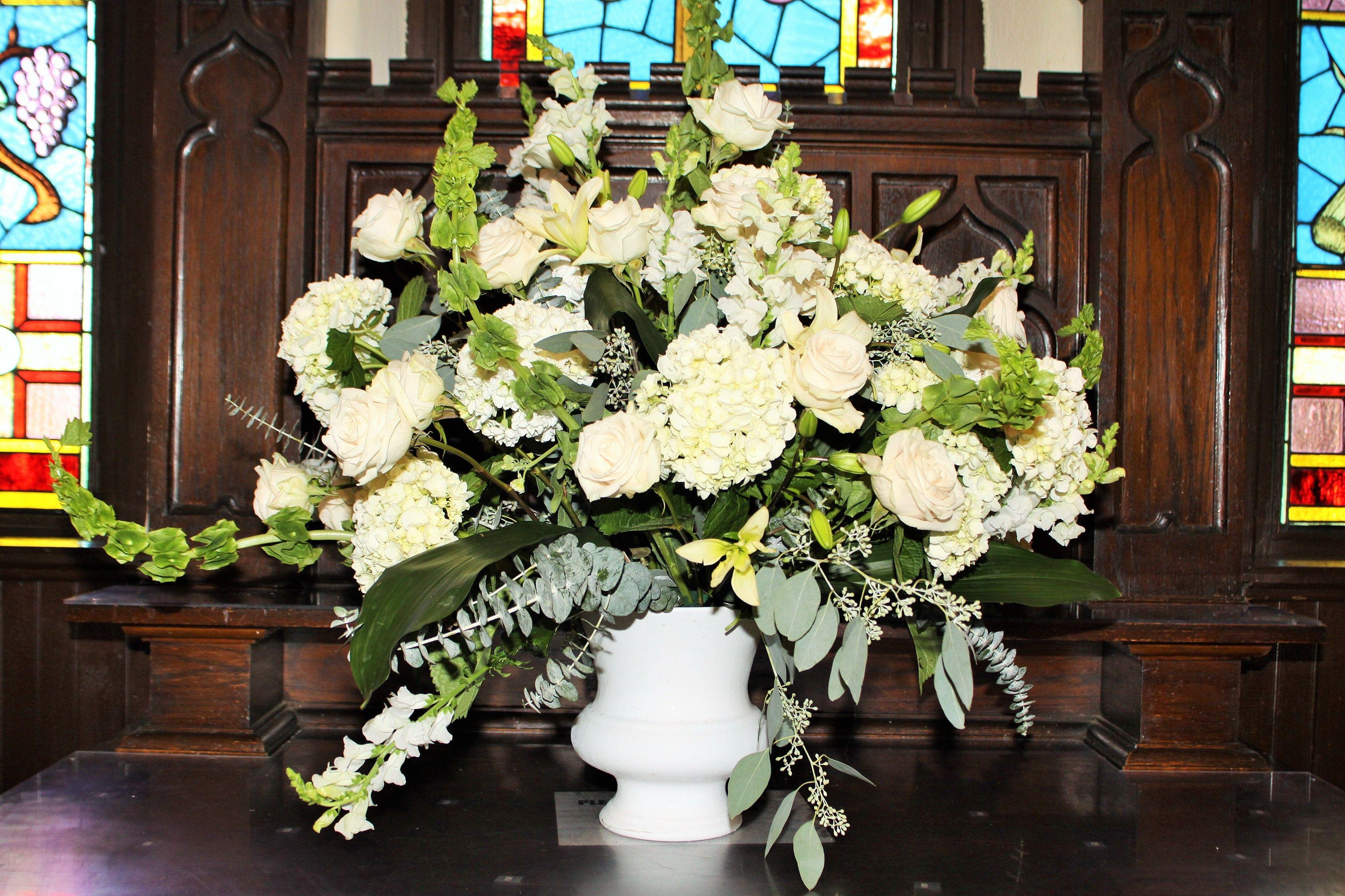 12+ White wedding hydrangea growth rate ideas