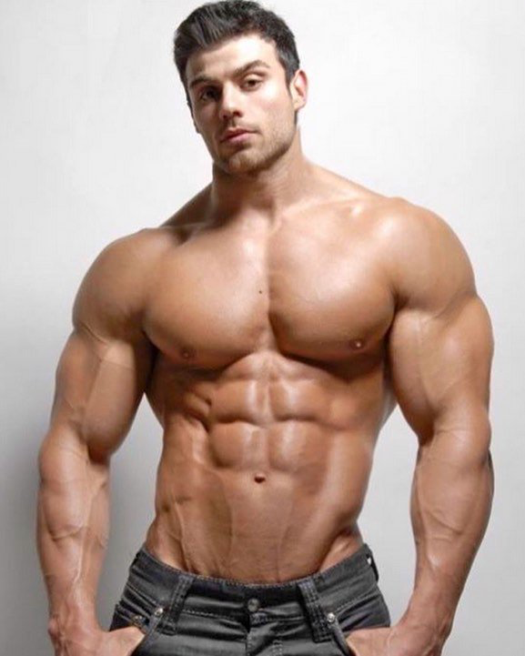 Pin On Muscle