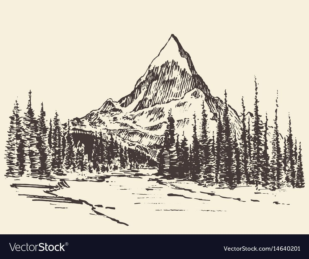 Sketch Mountains Pine Forest River Drawn Vector Image Sponsored Pine Forest Sketch Mountains Ad Forest Sketch Mountain Drawing Skyline Drawing