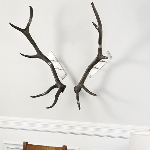 Charmant Elk Antler Wall Mount. No Two Antlers Are Alike. Please Allow 3 5