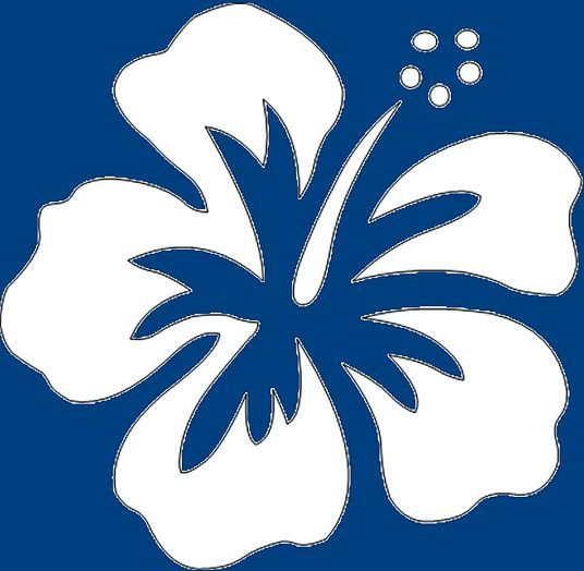 Fiori Hawaiani Disegni.Disegnare Un Fiore Di Ibisco In Stile Cartoon Idee Per Disegnare