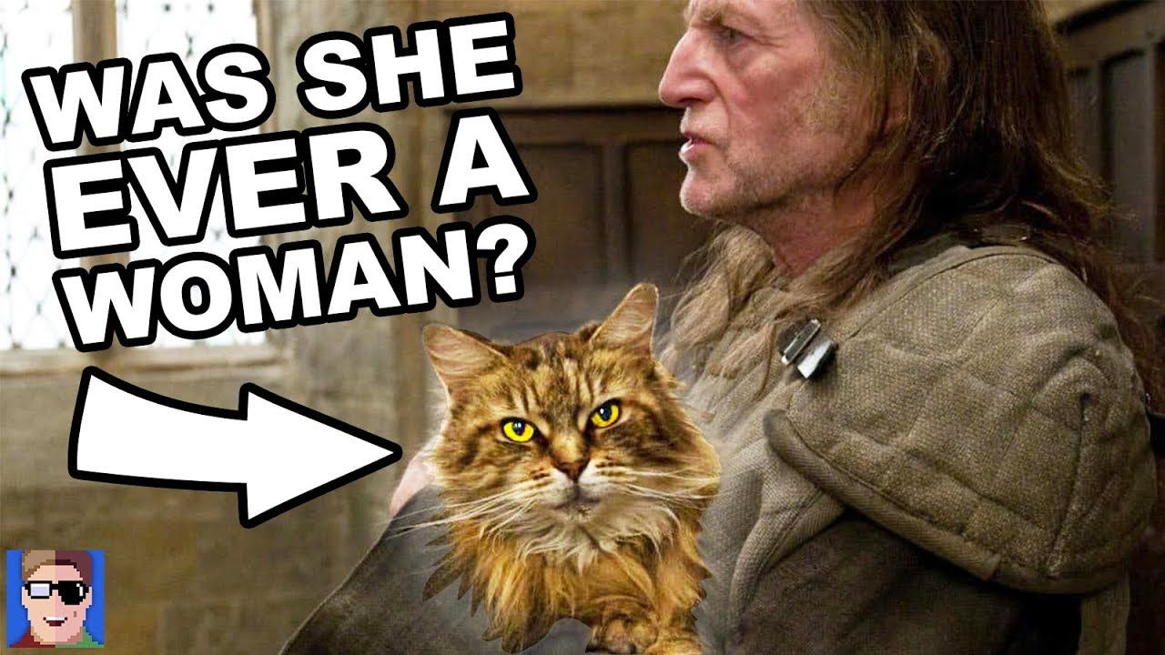What Is The Deal With Filch And Mrs Norris Harry Potter Explained Norris Wizarding World Of Harry Potter Harry