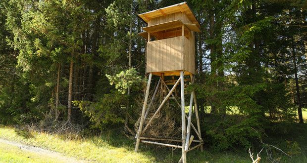 What to look for in a tree stand hunting pinterest for Deer stand made from pallets