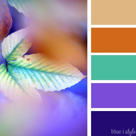 Seasonal Style  NonTraditional Fall Color Palettes For Every