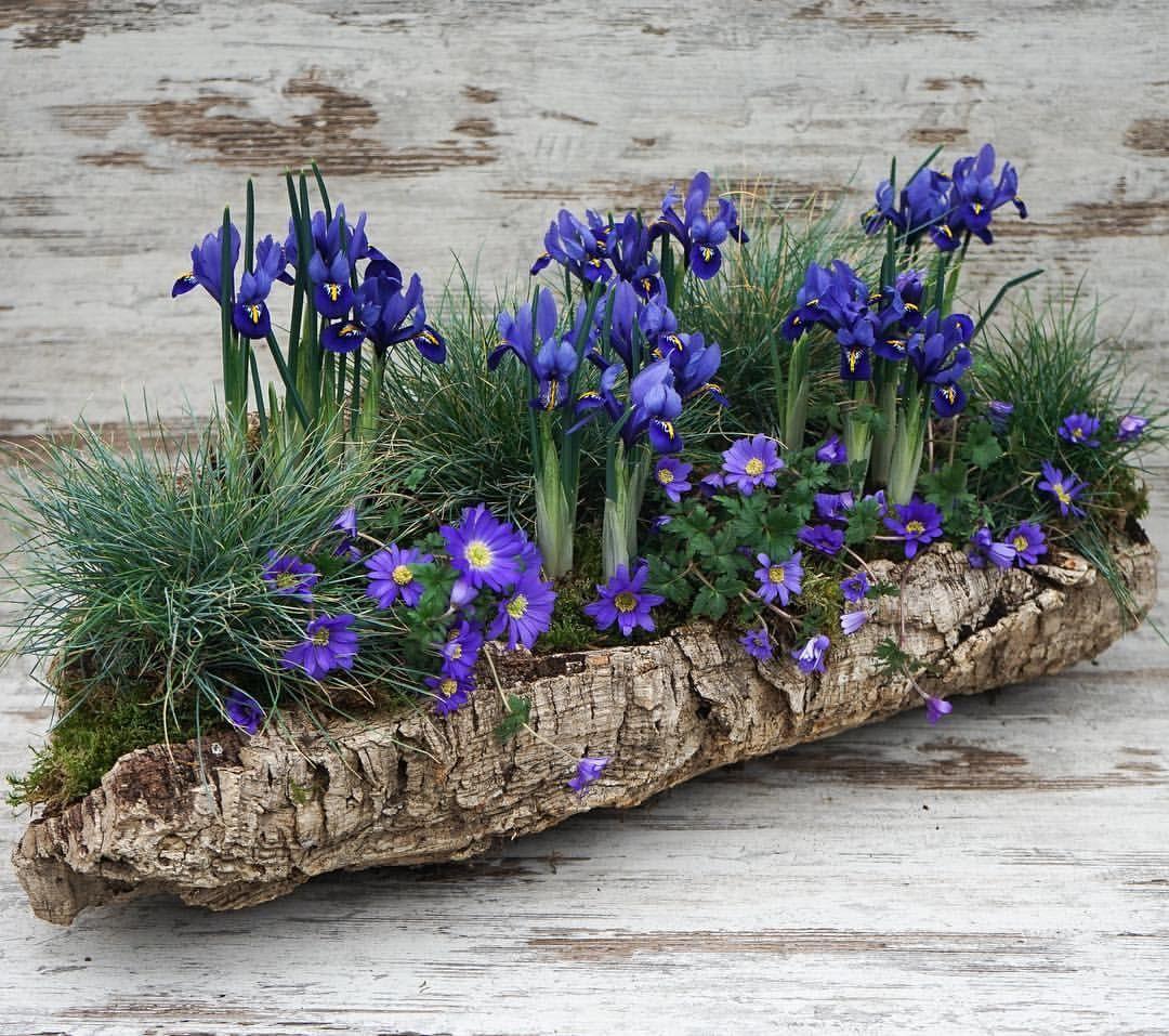 #dewit #gardentools #madeinholland #since1898 #trädgård # ...
