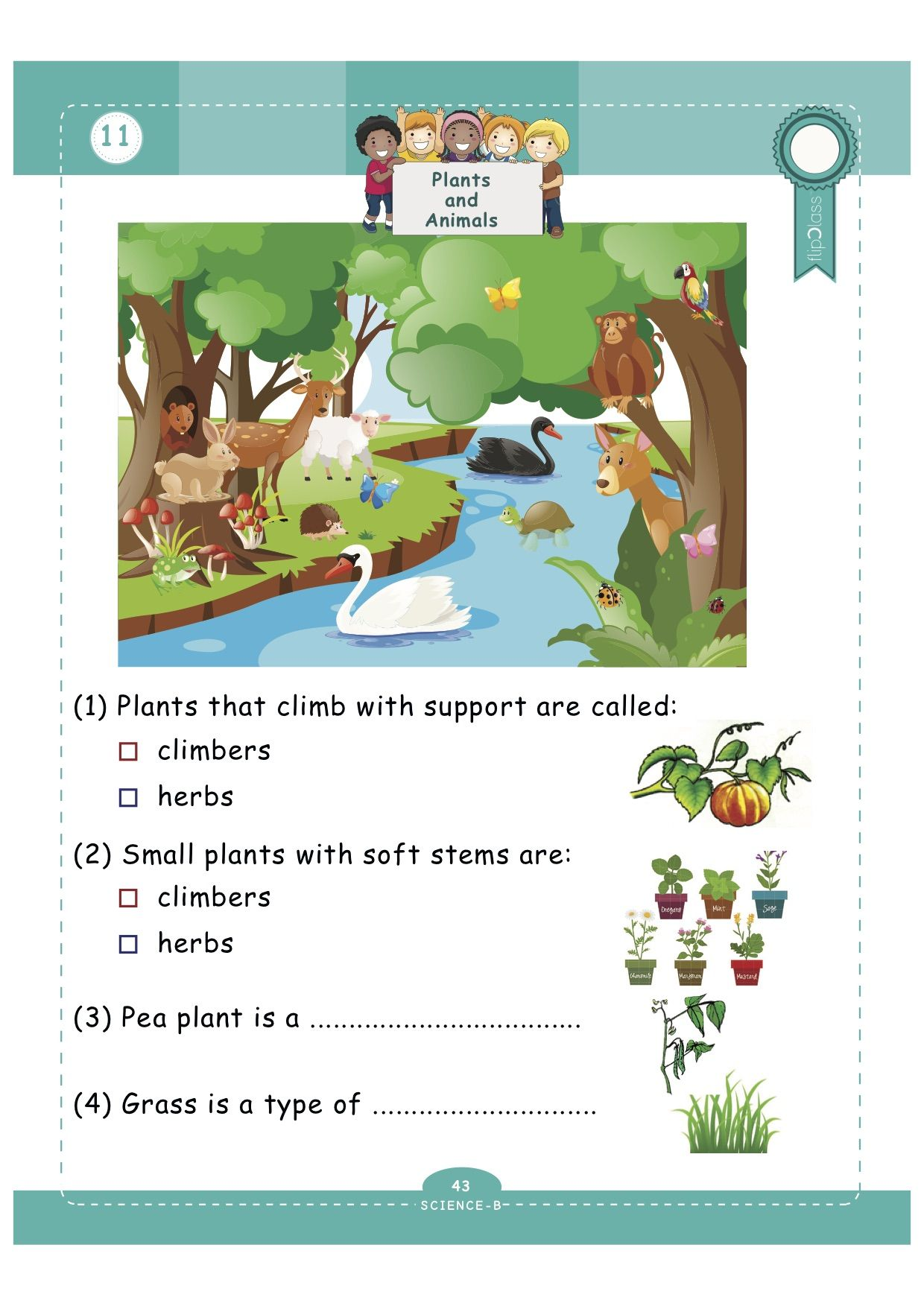 Worksheets for Grade1 flipClass Genius Kids These