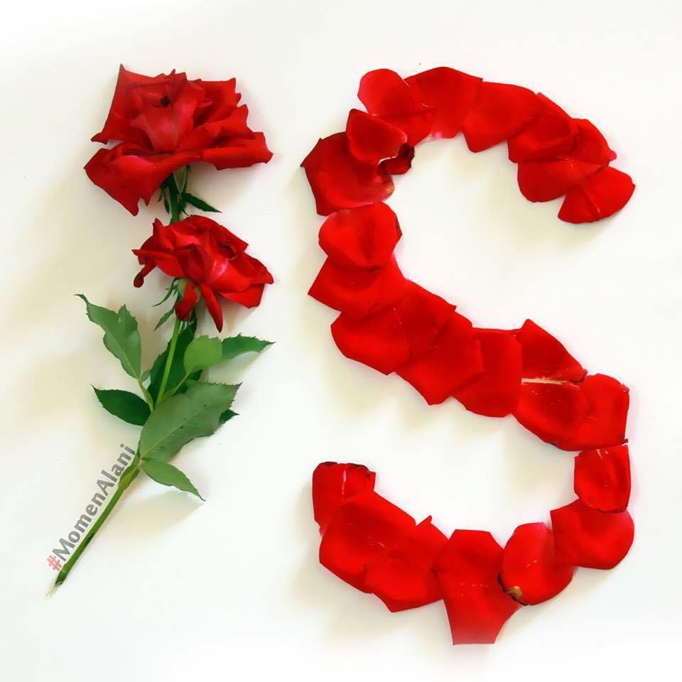 S Alphabet In Rose #Rose #Name #As...