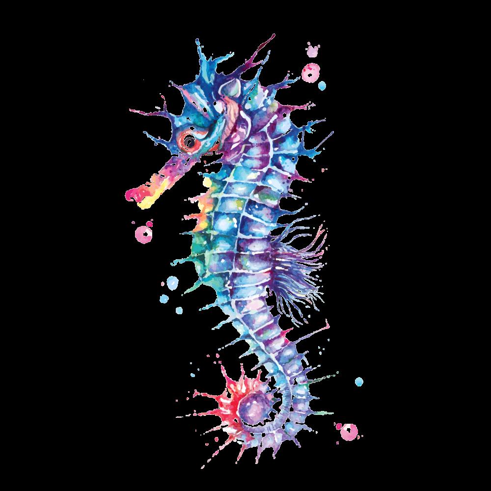 Seahorse Painted With Watercolor Seahorse Painting Seahorse Art Ocean Art Painting