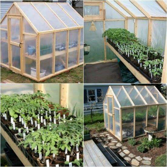 Backyard Greenhouse, Simple Greenhouse