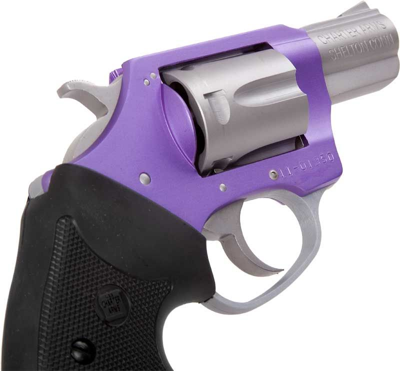 Vz Grips Charter Arms
