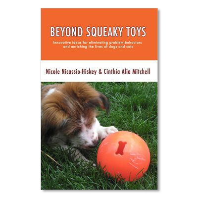 Beyond Squeaky Toys: Innovative ideas for eliminating problem behaviors and enriching the lives of dogs and cats