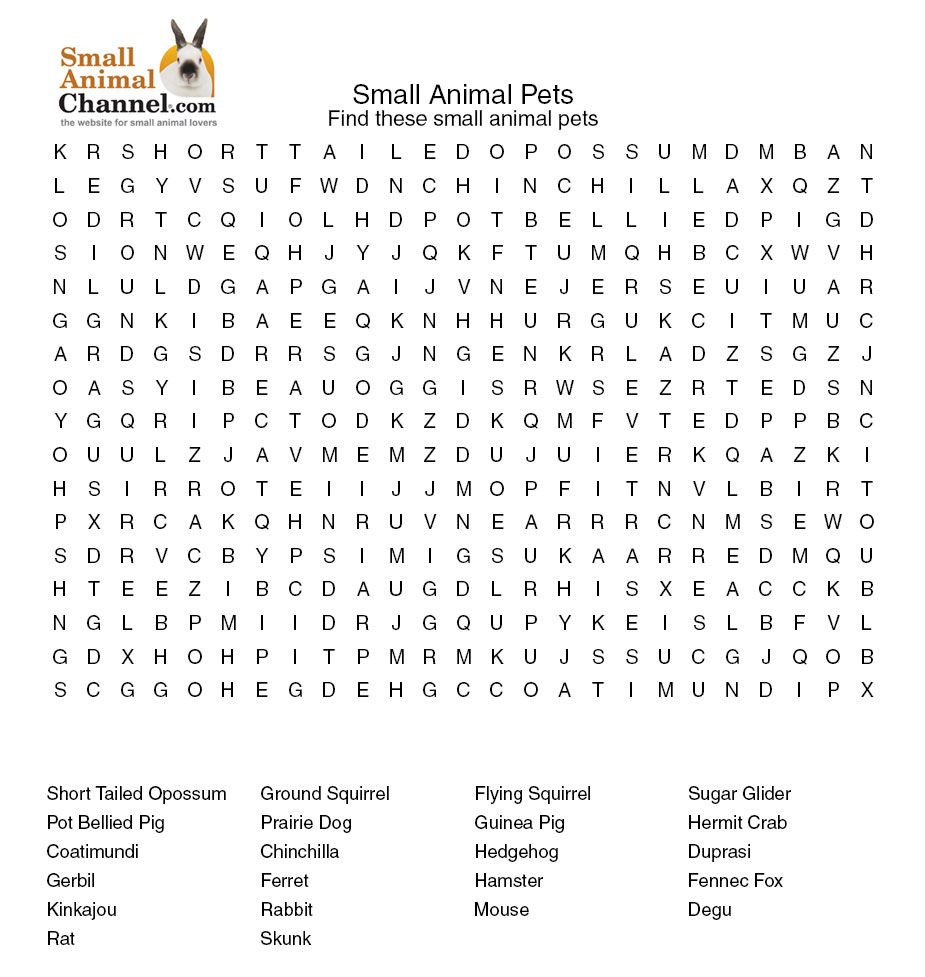 Www Wordseaces Com Critter Word Searches Small Pets Pets