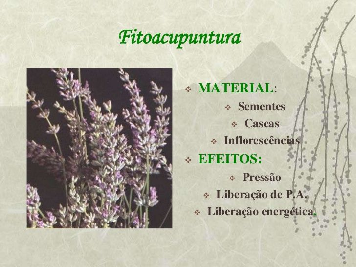 Fitoacupuntura          MATERIAL:                    Sementes                    Cascas                 Inflorescência...