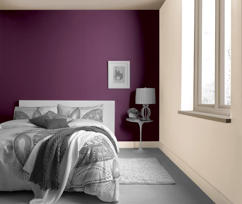 Scrumptious From Crown Paints Feature Wall Range
