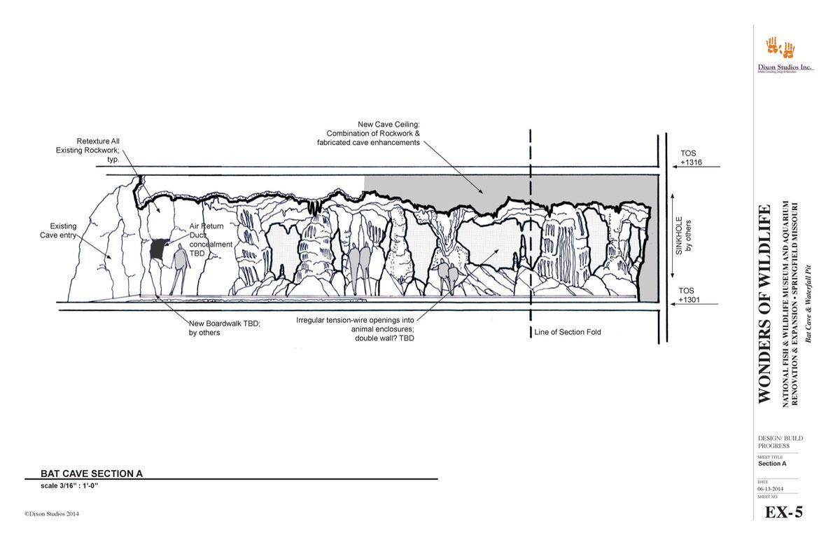 Cave bat thesis techniques dissertation sociologique