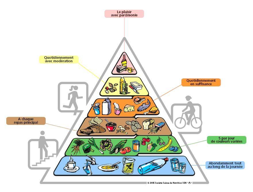 Bien connu Les 25 meilleures idées de la catégorie Pyramide alimentaire des  SY99