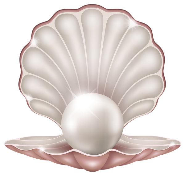 Beautiful Clam with Pearl PNG Clipart Image | ClipArt ...