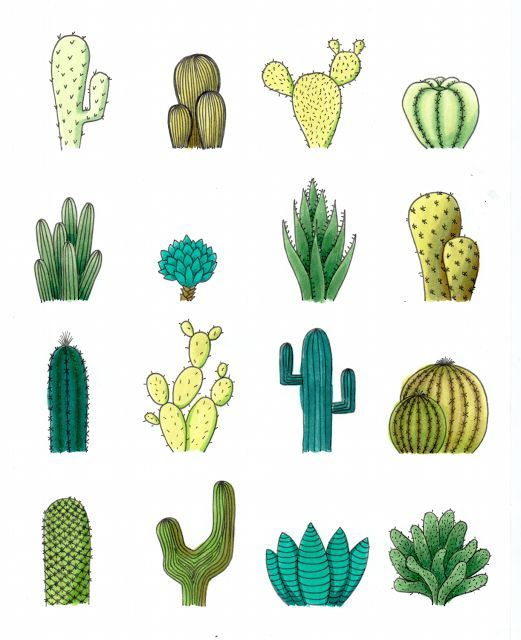 Cactus drawing. Art journal inspiration painting