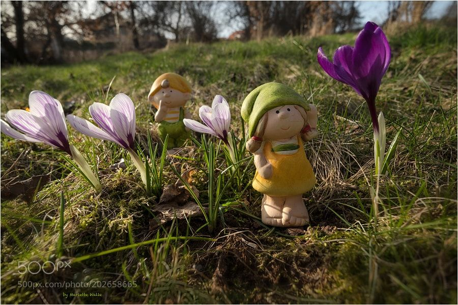 Tina and Tom and the huge crocus by MarietteWalle