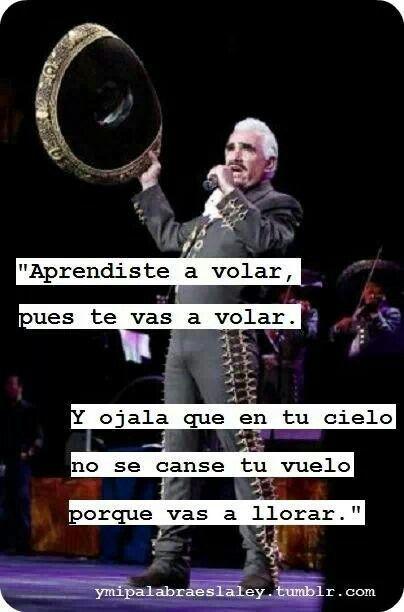 Vicente Fernandez Aprendiste a volar lyrics - YouTube
