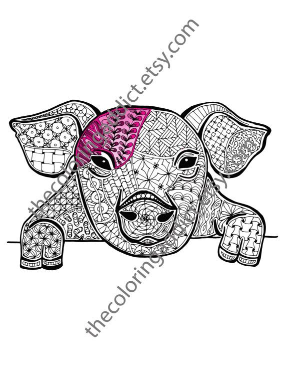 Pig Coloring Sheet Animal Pdf By TheColoringAddict