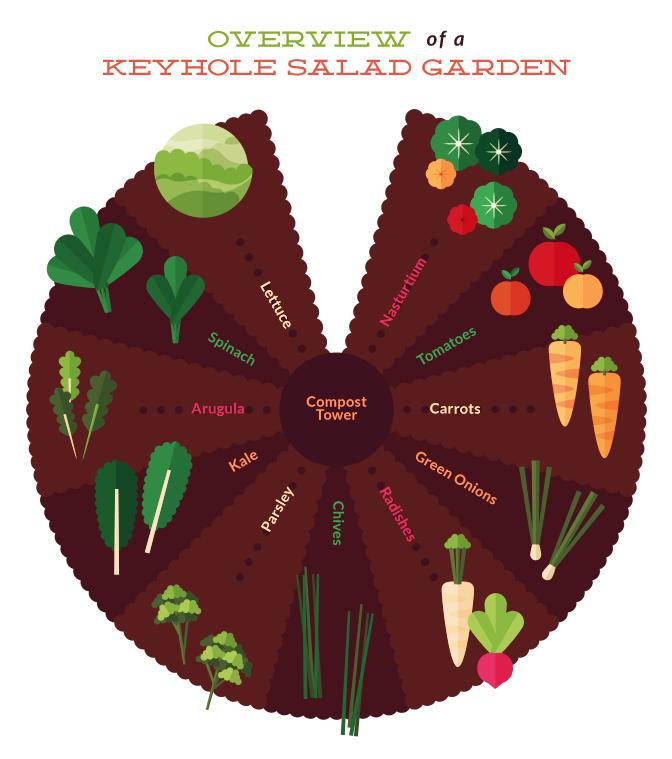 The Secret To Building A Salad Keyhole Garden Keyhole Garden Design Keyhole Garden Raised Garden Beds