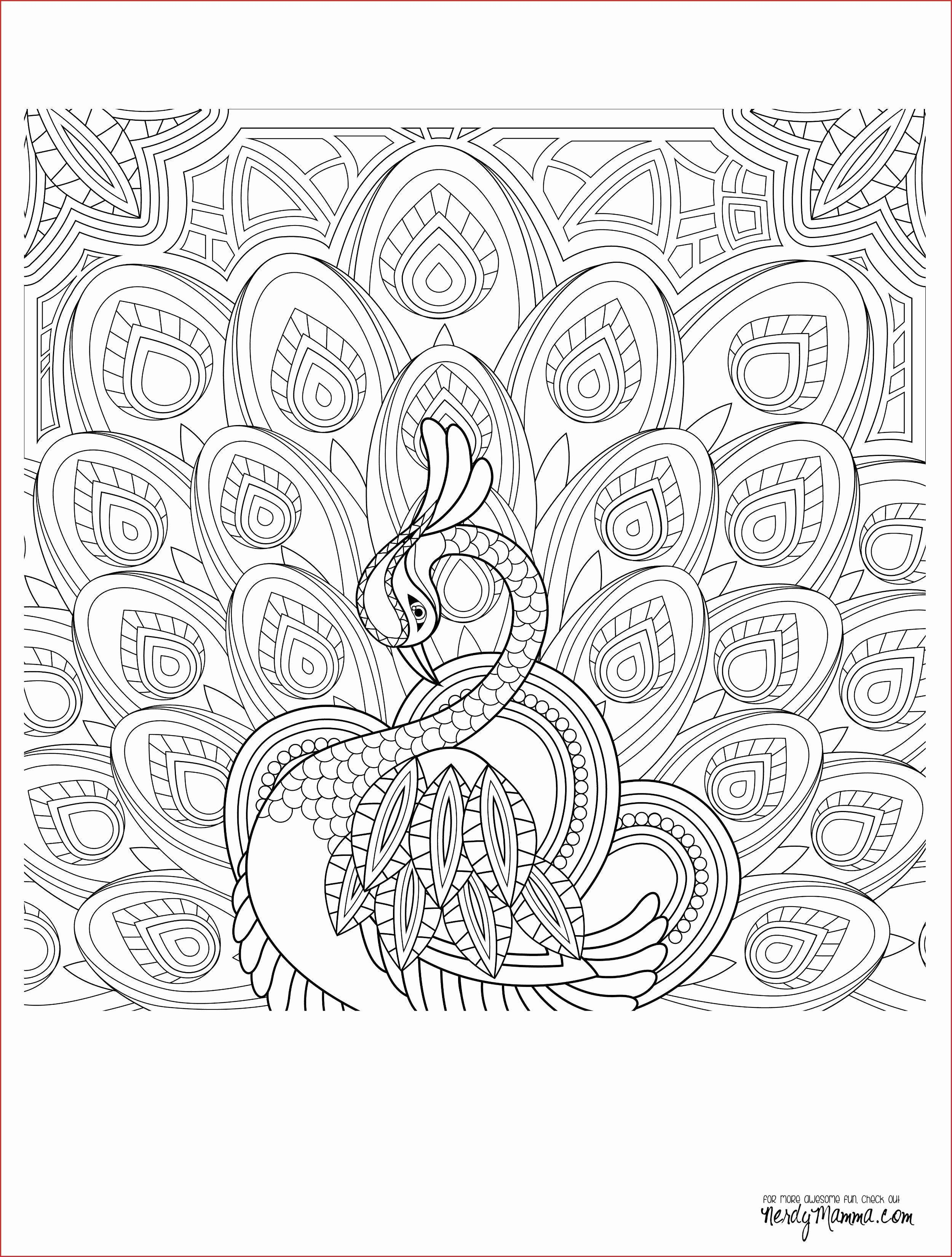 Coloring Page Space Rover New Lamborghini Coloring Page Mandala Coloring Pages Love Coloring Pages Animal Coloring Pages [ 3300 x 2500 Pixel ]