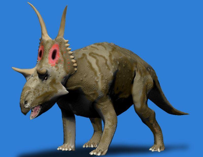 Diabloceratops_BW.jpg (800×619) - D. eatoni. Crétacé supérieur de l'Utah. Dinosauria, Ornithischia, Marginocephalia, Ceratopsia, Ceratopsidae, Centrosaurinae. Auteur : Nobu Tamura / spinops.blogspot.com. 2008.