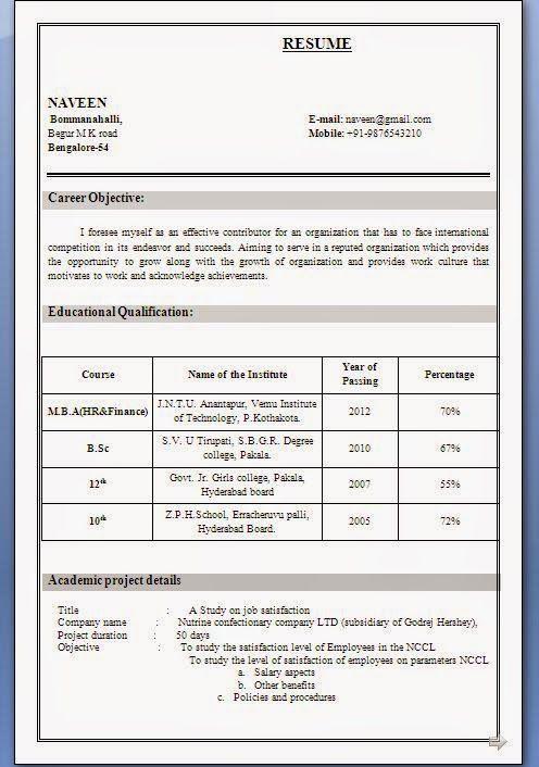 europass curriculum vitae Sample Template Example ofExcellent