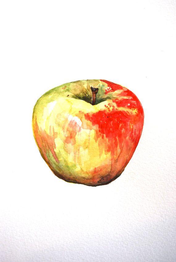 Original watercolor painting of a Honeycrisp apple. Stunning greens that drift into reds make this a very pretty still life. Title: Honeycrisp Medium: