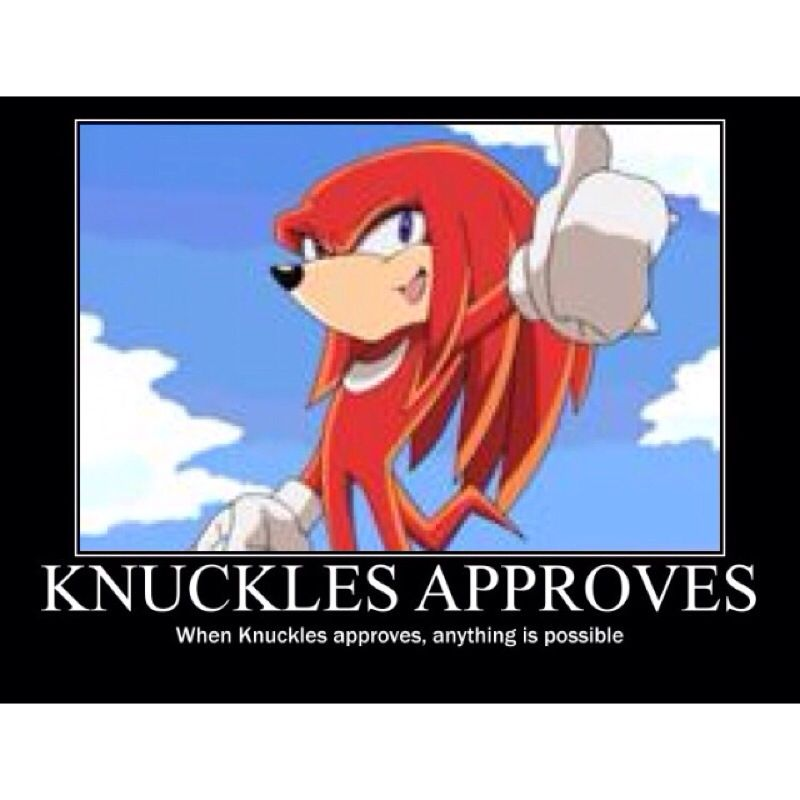 """""""If Knuckles approves,anything is possible"""" Sonic the"""