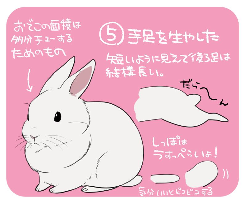 自己流 簡単なうさぎの描き方 6 Rabbit うさぎ イラスト かわいい うさぎイラスト ウサギの絵