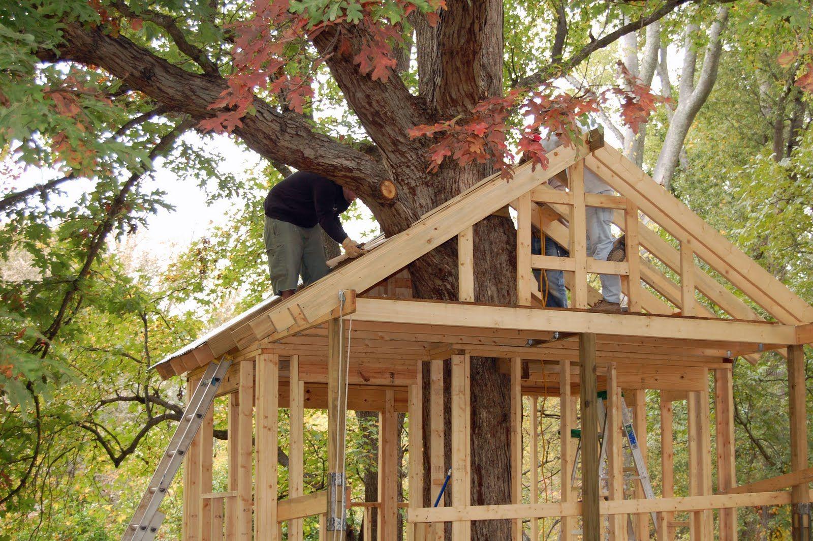 tree house plans projets essayer pinterest maison dans les arbres cabane et maison. Black Bedroom Furniture Sets. Home Design Ideas