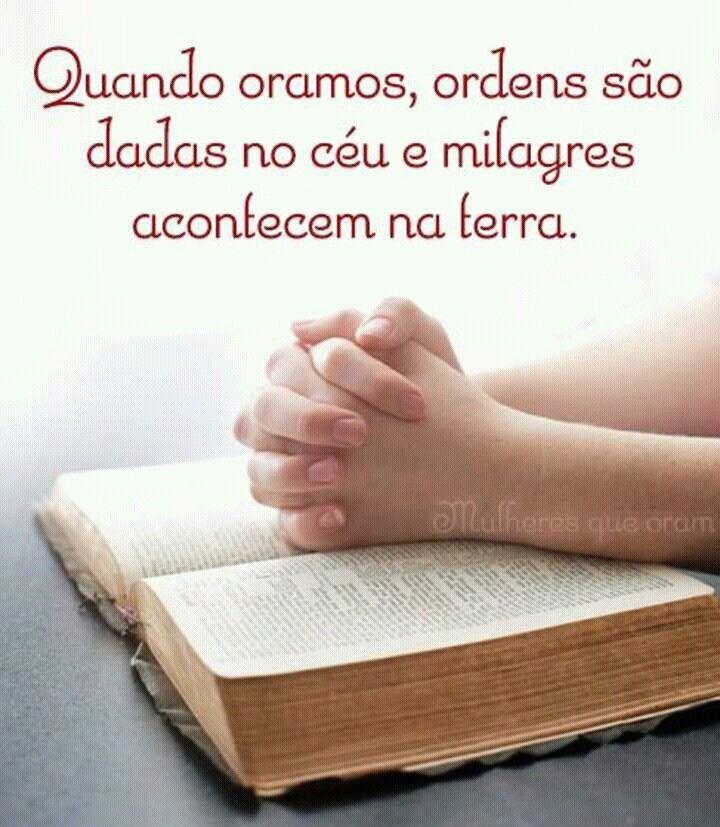 Conheca Sua Biblia De Capa A Capa Frases Lindas De Deus Frases