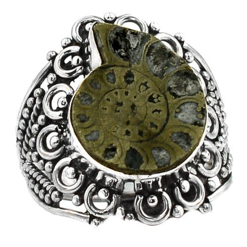 Fossil-Pyrite-Ammonite-925-Sterling-Silver-Ring-Jewelry-s-8-5-SR113214